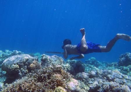 Photo non datée fournie le 19 avril 2018 par Melissa Ilardo d'un plongeur Bajau, en Indonésie. ©Melissa Ilardo, AFP
