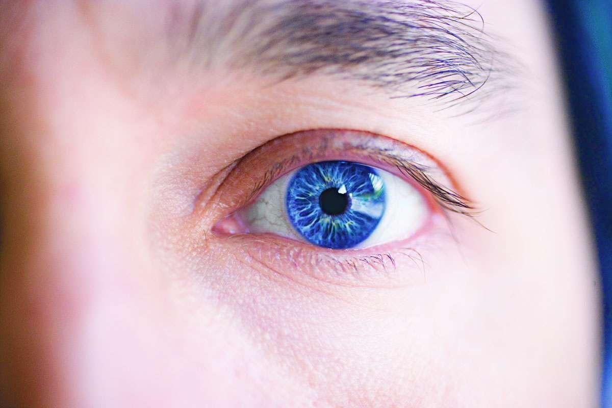 Le champ visuel humain se caractérise par une zone nette au centre, et des contours flous. Si l'œil ne fait que percevoir la lumière, c'est le cerveau qui intègre ensuite le tout et l'interprète comme une image. © feastoffun.com, flickr, cc by nc sa 2.0