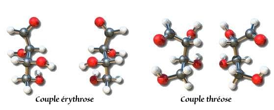 Chaque sucre peut adopter deux configurations différentes avec les mêmes constituants. Généralement, seule l'une de ces formes est biologiquement active. Cette caractéristique revêt une importance considérable pour l'industrie pharmaceutique car 2 isomères d'une même molécule peuvent posséder des propriétés différentes. © Université en ligne