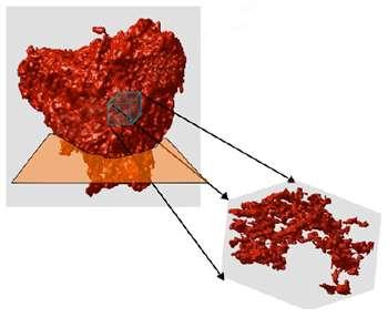 Le réseau de la céramique étudiée par les chercheurs du LBNL. Crédit : Lawrence Berkeley National Laboratory