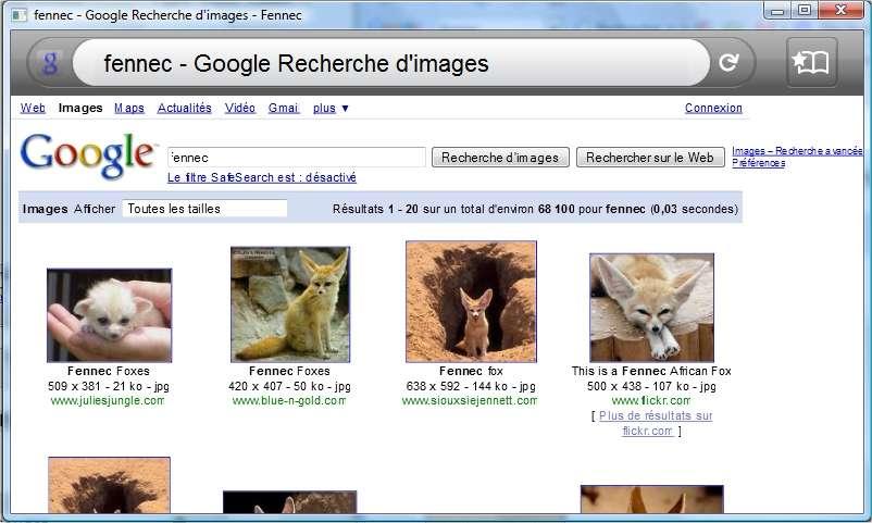 Le fennec, alias Vulpes zerda, le cousin du renard, retrouvé par Fennec, cousin de Firefox.