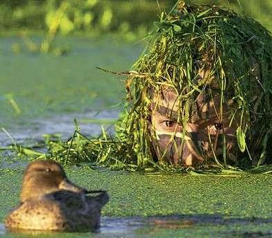 Les héros de la biodiversité n'hésitent pas à se mouiller pour étudier la nature tout en la respectant. © Éditions Ouest France