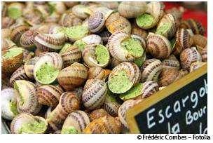 Les escargots sont bons pour la santé, lorsqu'ils sont consommés nature ! © Frédéric Combes/Fotolia