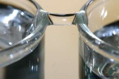 Pont d'eau créé par la différence de potentiel entre deux béchers d'eau. Crédit : Elmar C. Fuchs