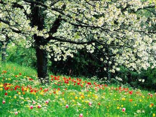 Équinoxe de printemps