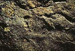 Ces traces laissées par des pas humains dans la grotte Chauvet, initialement datées de 31 000 ou 32 000 ans, pourraient en réalité accuser 4000 ans de plus