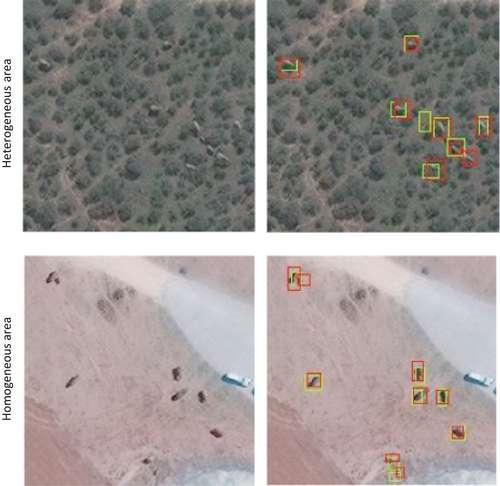 Voici l'une des détections du réseau de neurones à convolution (RNC), à Maasai Mara, au Kenya. À partir des images du satellite Geoeye-1, le RNC a pu détecter des éléphants (en vert). Ensuite, ces données ont été croisées avec la réalité du terrain (en rouge). © 2020 Maxar Technologies