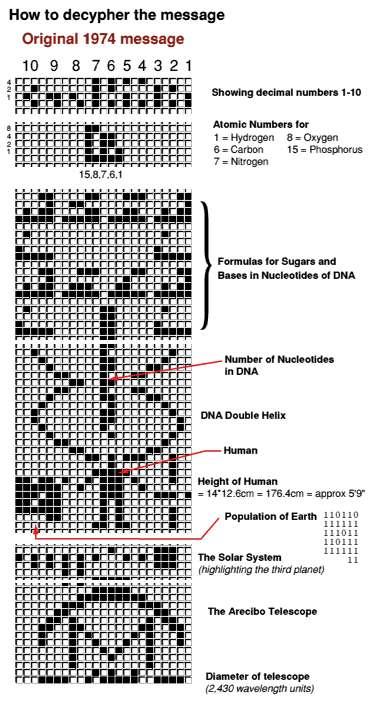 L'information arrangée selon 73 lignes et 23 colonnes donne une image. Si on lit de droite à gauche, les nombres de 1 à 10 : les numéros atomiques de l'hydrogène, du carbone, de l'azote, de l'oxygène et du phosphore. Ensuite, les formules chimiques des sucres et des bases dans les nucléotides de l'ADN, puis les nombres de nucléotides dans l'ADN et la structure en double hélice de l'ADN. Enfin, un croquis de l'être humain et sa taille, la population de la Terre, le Système solaire, et une image du radiotélescope d'Arecibo avec son diamètre. © Dave Cosnette
