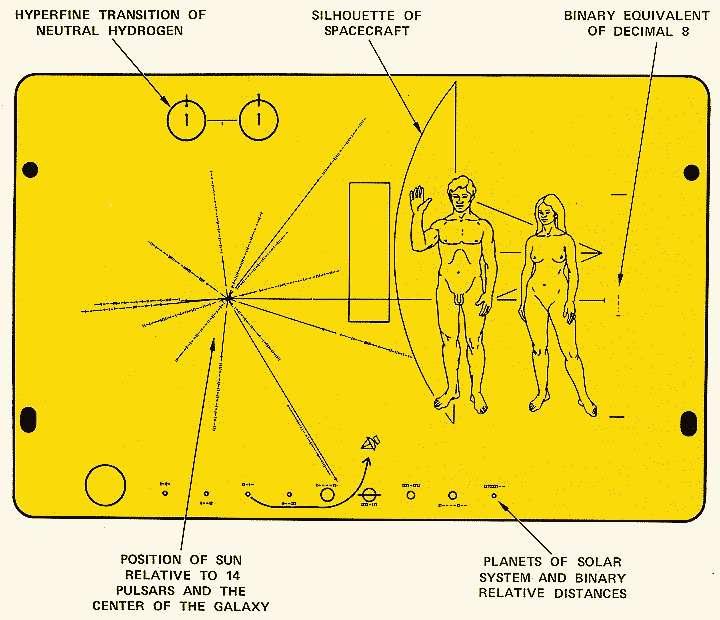 La plaque équipant les sondes Pioneer montre un homme et une femme à l'échelle de la sonde, la position du Soleil (position of sun)par rapport à quatorze pulsars et au centre de la Galaxie. Pour cela, une représentation de la transition hyperfine de l'atome d'hydrogène est montrée en haut à gauche. Elle donne donc une longueur d'onde de 21 cm qui peut servir d'unité de mesure. Ainsi, la hauteur de la femme à droite est donnée en numérotation binaire comme étant huit fois la longueur d'onde de la raie de l'hydrogène précédente (Binary equivalent of decimal 8). Les pulsars sont identifiables par leur fréquence de rotation en binaire exprimée comme un multiple entier de celle de la raie à 21 cm. En bas, le Système solaire et la planète d'origine de la sonde sont montrés avec les distances relatives des planètes (Planets of solar system and binary relatives distances), aussi en numérotation binaire. © Nasa