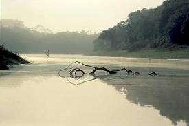 Le fleuve Amazone dans toute sa splendeur. Crédits DR