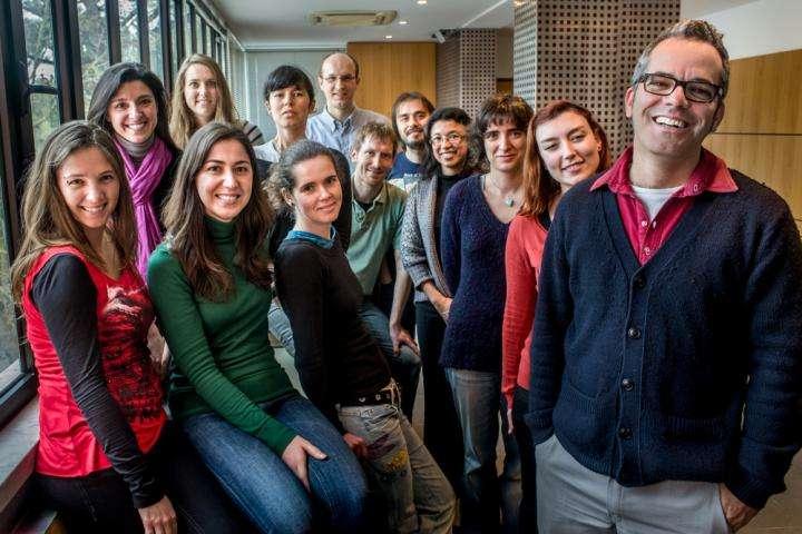 L'équipe de Miguel Soares de l'Instituto Gulbenkian de Ciencia (Portugal) a découvert qu'une bactérie de la flore intestinale protège du paludisme. © J Roberto Keller (IGC)