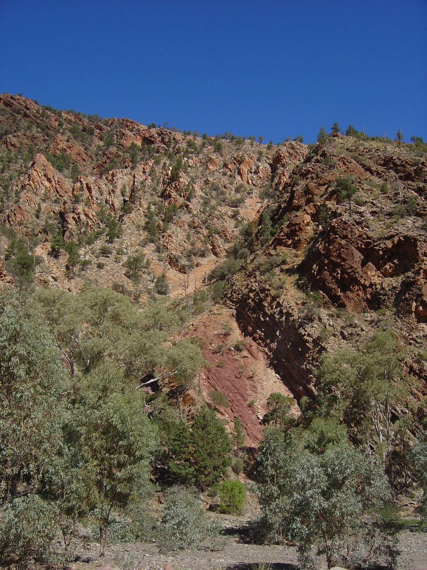 Le site géologique de Brachina Gorge (Australie) contient plusieurs successions de paléosols et de roches sédimentaires. Le niveau de la mer variait fortement durant l'Édiacarien. Des roches formées sous l'eau pouvaient donc rapidement se retrouver exondées, donc exposées aux éléments, ce qui justifierait les observations de Gregory Retallack, mais pas ses conclusions. © Gregory Retallack
