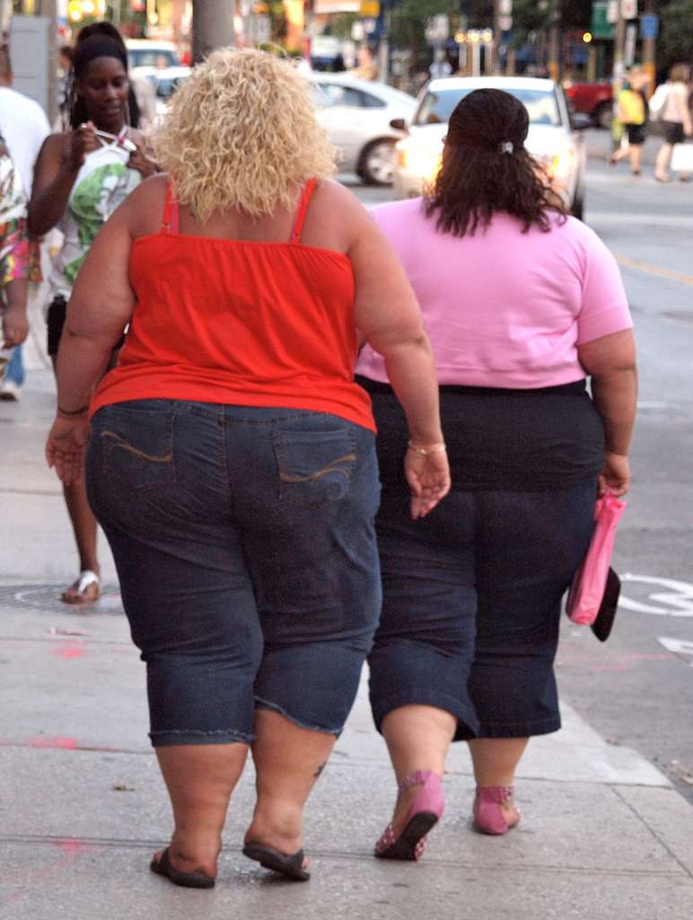L'obésité progresse dans le monde entier et tue plus que la malnutrition. Pour l'heure, la meilleure solution contre le surpoids consiste à avoir une alimentation équilibrée et une activité physique régulière. © Colros, Flickr, cc by sa 2.0