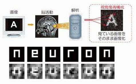 A partir des signaux visuels recueillis chez le sujet regardant une lettre, l'ordinateur a pu reconstituer la forme géométrique de ce caractère.... Crédit ATR