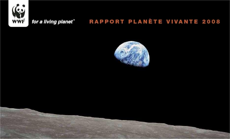 Le rapport Planète vivante, téléchargeable en français (voir les liens ci-dessous). © WWF