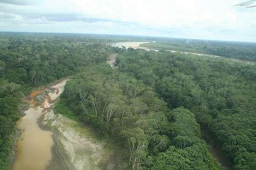 L'Amazonie est l'un des poumons verts de la Terre, comme les océans et leur phytoplancton. © Véronique Debord CC by-sa 2.0