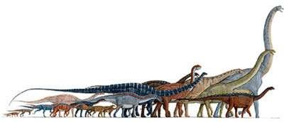Cas de cancers chez les dinosaures