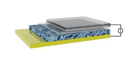 Schéma de la cellule photovoltaïque réalisée par l'équipe allemande. L'anode en graphène (en haut) et la cathode en or (en bas) enserrent les deux couches de semi-conducteurs photosensibles. © Linjie Zhi/Max Planck Institute for Polymer Research