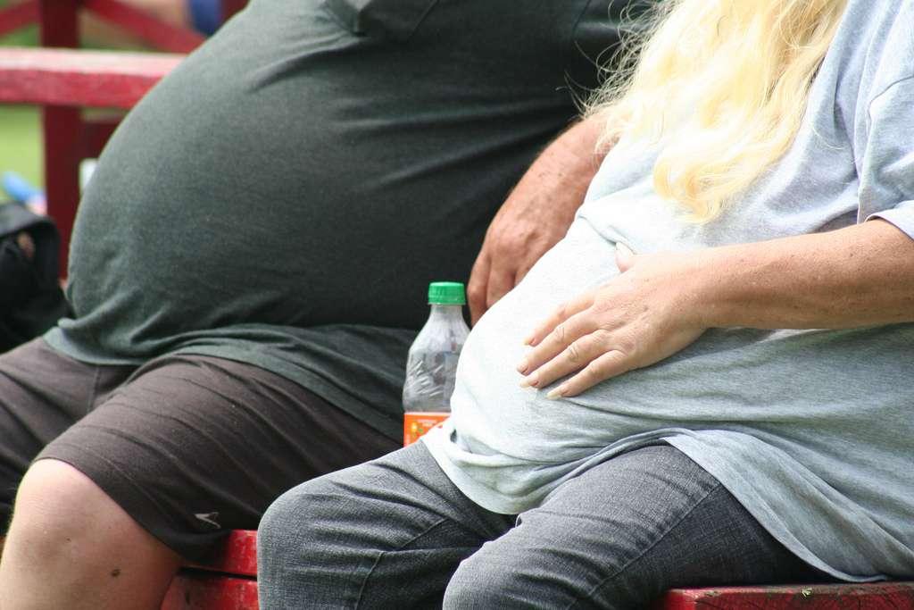 Si certaines personnes obèses ont du mal à réguler leur appétit et à manger uniquement ce dont leur corps a besoin, c'est que leur système immunitaire piège l'hormone de la faim et prolonge son action. © Tobyotter, Flickr, cc by 2.0