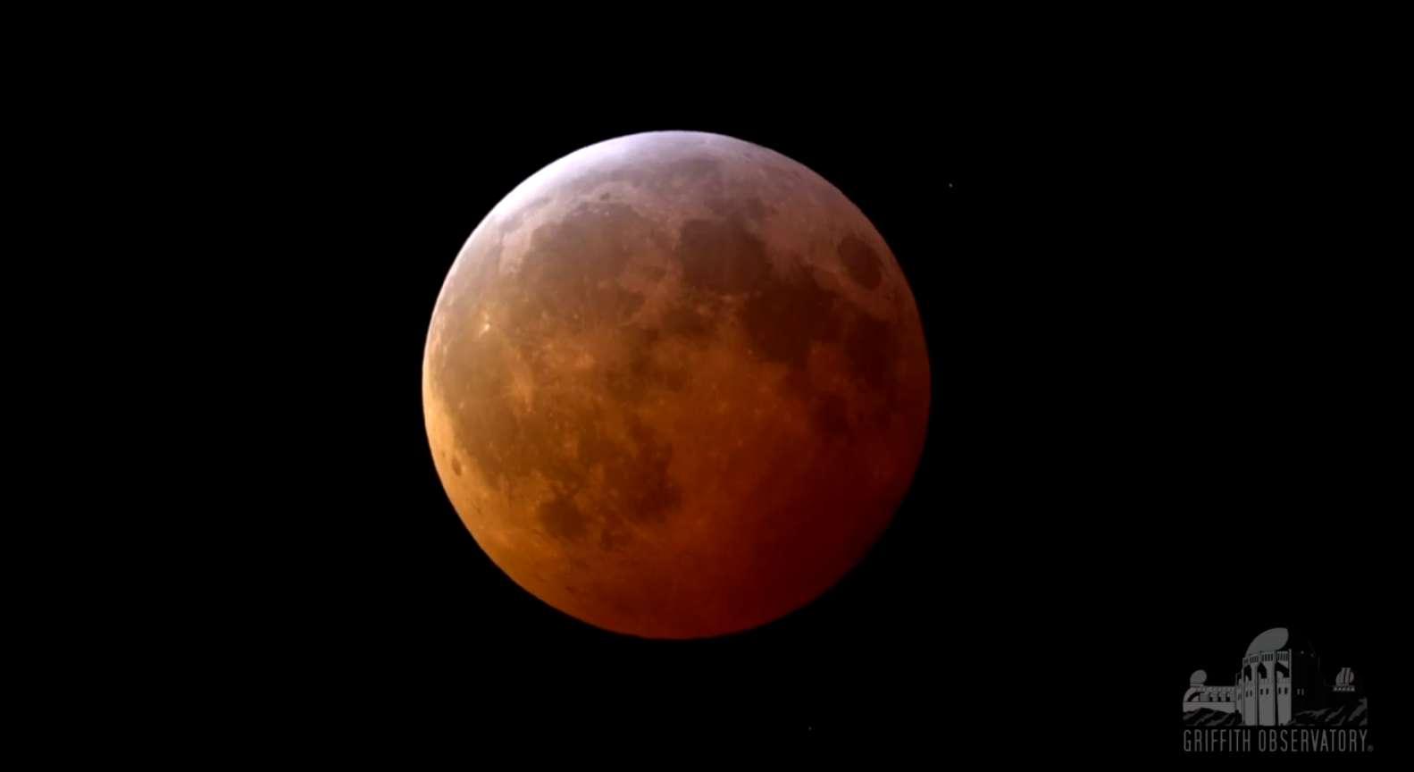 La Lune parée de teintes cuivrées au cours de l'éclipse totale du 21 janvier 2019. © Griffith Observatory