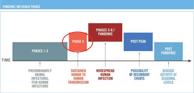 Dans les phases 1 à 3 du classement des niveaux d'alerte de l'OMS pour les virus de la grippe, le virus ne s'est pas propagé chez l'homme, ou très peu. En phase 4, il y a épidémie, c'est-à-dire transmission importante d'humains à humains. En phase 5 et 6, il y a pandémie : l'épidémie s'est répandue dans au moins deux pays. En situation Postpeak (post-pic), l'infection régresse mais des flambées locales restent possibles. En phase post-pandémique, le niveau d'infection est revenu à celui des épisodes grippaux saisonniers habituels.