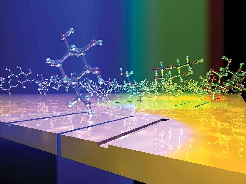 L'essor des nanotechnologies ouvre la voie à des thérapies plus précises et à une connaissance plus approfondie des différents paramètres physiologiques d'un individu. Au-delà de la glycémie, des micropuces pourraient nous donner notre rythme cardiaque, notre fréquence respiratoire, notre taux de fer et pourquoi pas nous alerter à l'intrusion d'un virus ou d'une bactérie pathogène pour prendre un traitement préventif. © Pacifici et al., Nano Letters