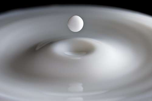 Le lait : faudrait-il ne pas en abuser ? © Pedro Moura Pinheiro / Flickr - Licence Creative Common (by-nc-sa 2.0)