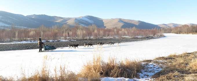 Nicolas Vanier sur une piste en Mongolie, fin février 2014. La neige devient rare. Quelque temps plus tard, elle sera absente. © Taïga