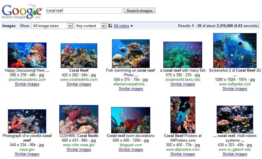 Avec la fonction Similar Images, quelques clics ont suffi pour trouver ces images qui montrent toutes du corail et au moins un poisson coloré.
