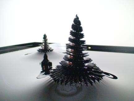 Sculpture de ferrofluide. © Sachiko Kodama