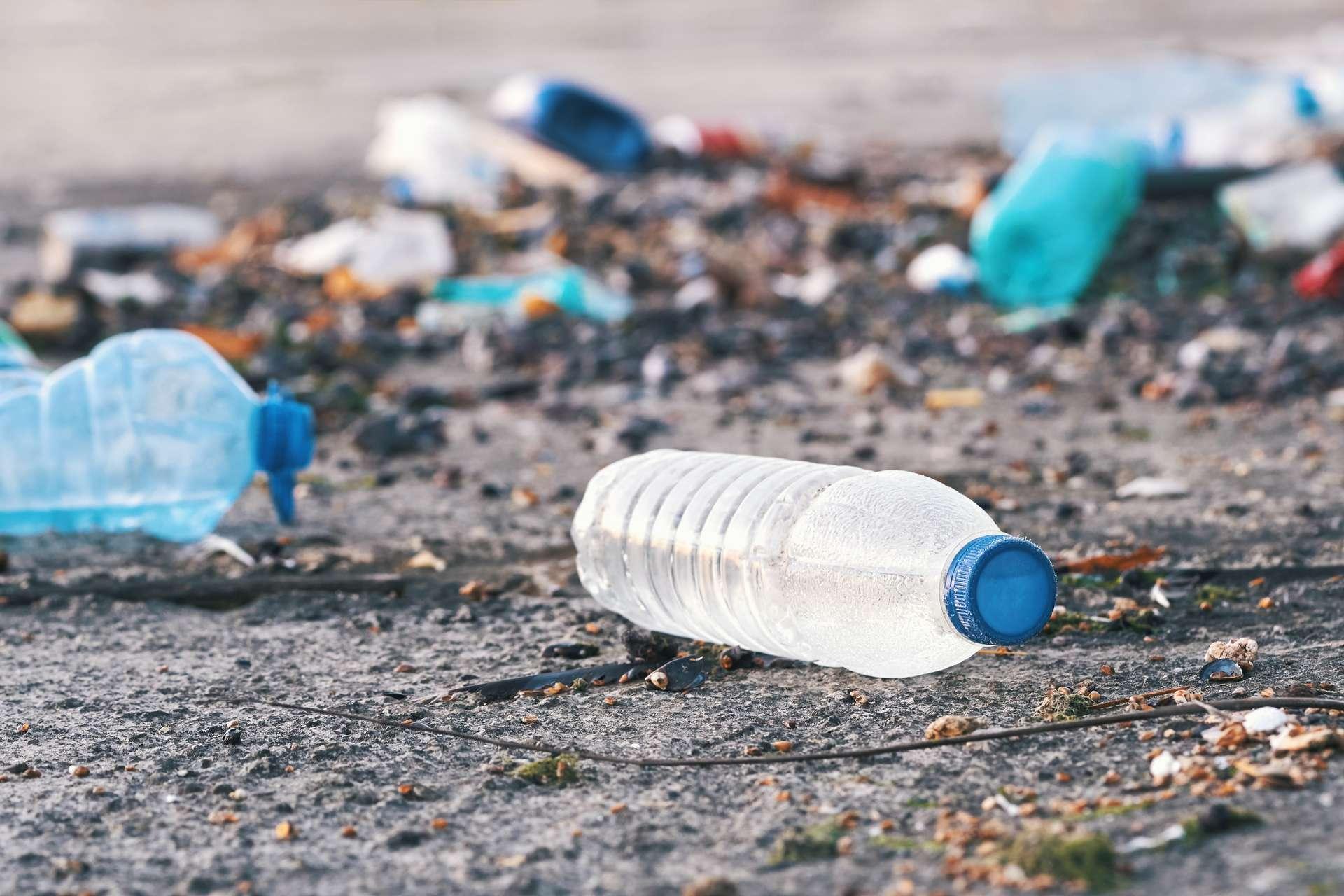 Les microplastiques sont présents dans tous les écosystèmes. © marina_larina, Adobe Stock