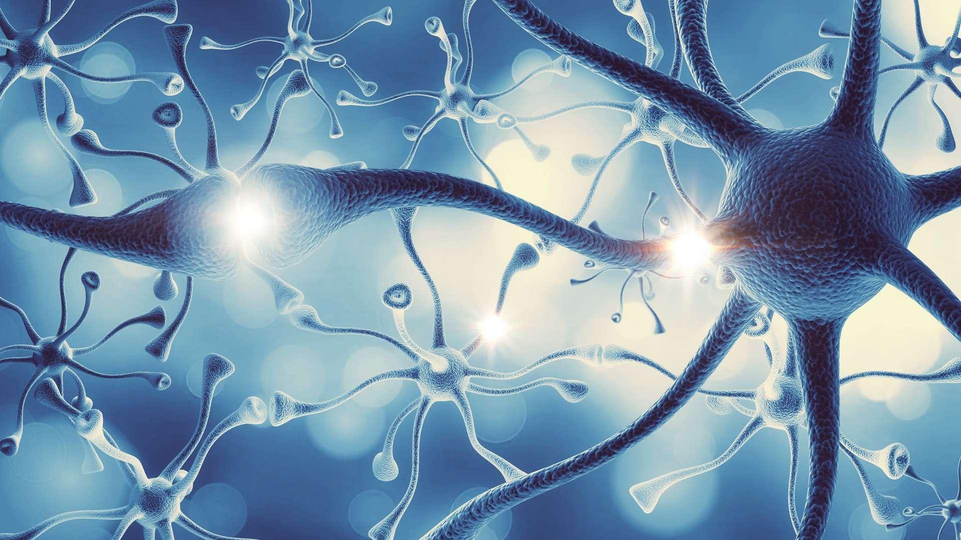 Des cellules ont pu être reprogrammées pour utiliser des matériaux synthétiques, fournis par les scientifiques, afin de construire des structures artificielles et fonctionnelles à l'intérieur du corps. © BillionPhotos.com, Adobe Stock