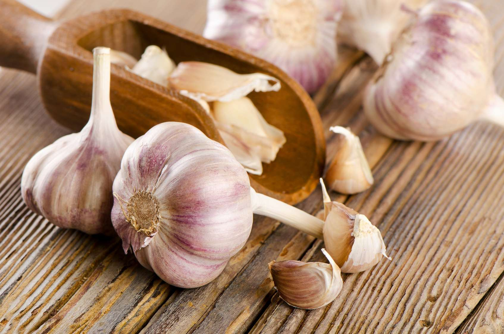 Garlic: what are its health benefits?