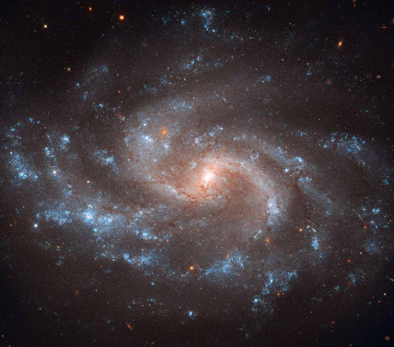 La galaxie NGC 5548 a un diamètre de cent mille années-lumière et se trouve à une distance de 240 millions d'années-lumière de la Voie lactée. Elle contient un trou noir supermassif d'environ 40 millions de masses solaires accrétant de la matière. © Nasa, Esa, A. Riess (STScI/JHU), L. Macri (Texas A & M Univ.) et al., Hubble Heritage (STScI/Aura)