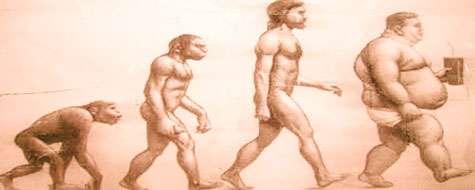 Dessin satirique sur l'évolution de l'Homme. © DR