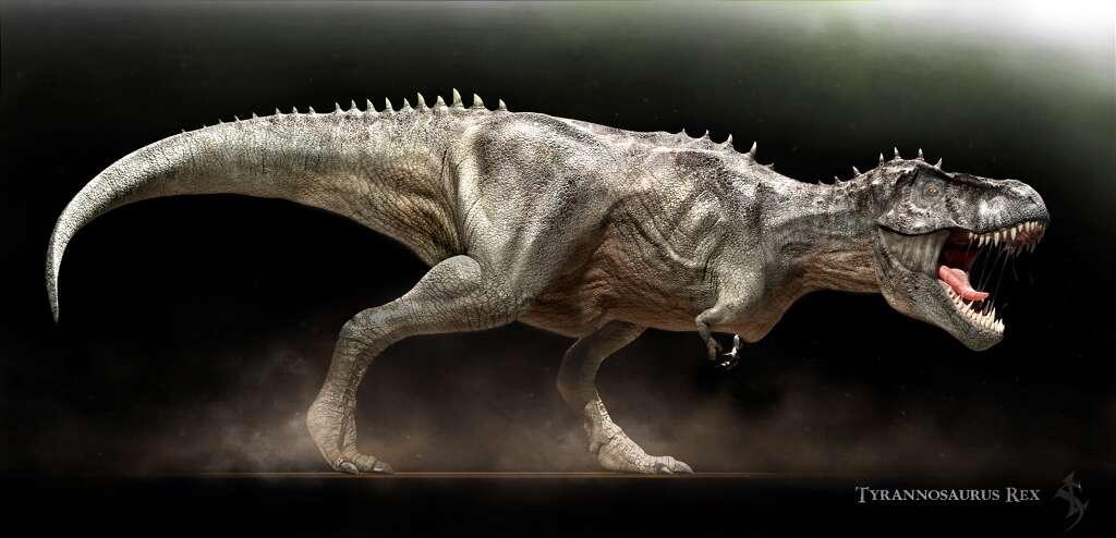 T-rex. © Vlad Konstantinov