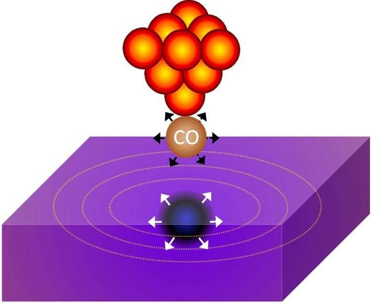 Un schéma montrant la molécule de CO à la pointe du microscope à effet tunnel au-dessus de la plaque en or. Tout se passe comme si une sorte de reflet de la molécule se trouvait dans la plaque en or et vibrait en transférant de la chaleur. © Igor Altfeder
