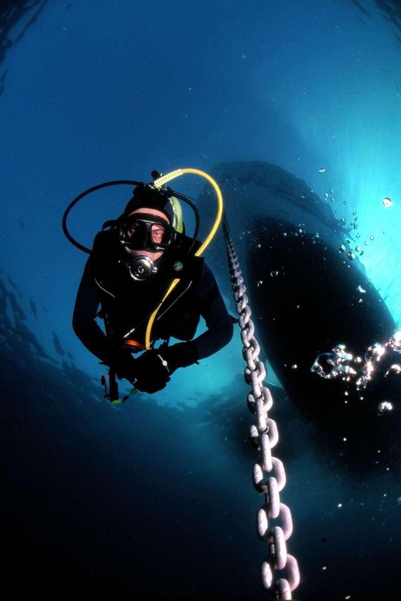 Les plongeurs, une population exposée au barotraumatisme - Source : Gilles-Gras-Fotolia
