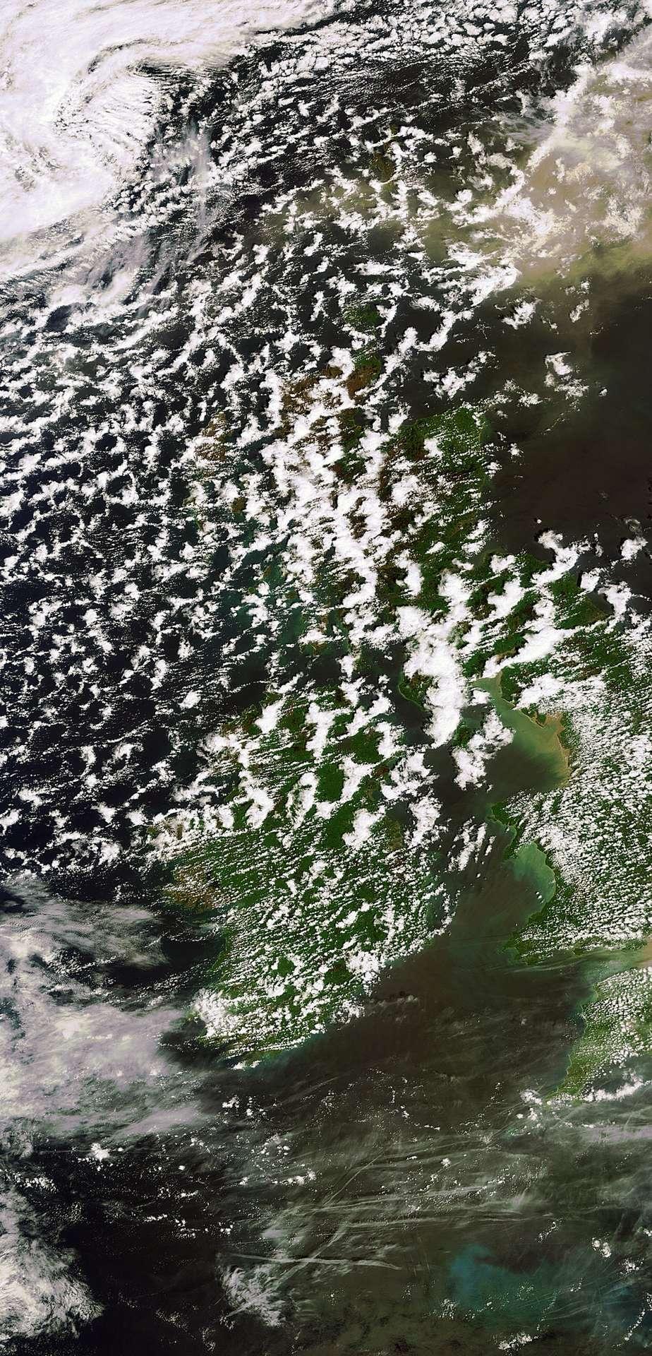 Cette image du nuage de cendres émis par le volcan islandais Grímsvötn a été prise le 24 mai par la caméra Meris (Medium Resolution Imaging Spectrometer) du satellite Envisat avec une résolution de 300 mètres. © DR