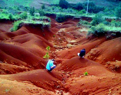 Mexique : cas d'érosion spectaculaire du sol en ravines, près de la ville de Morelia. © Philippe Bonté