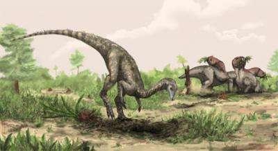 Cette reconstitution de Nyasasaurus parringtoni a été réalisée par Mark Witton. Cet animal présentait une hauteur au niveau du bassin d'environ 1 m. Il pourrait avoir été herbivore. © Mark Witton, Natural History Museum of London