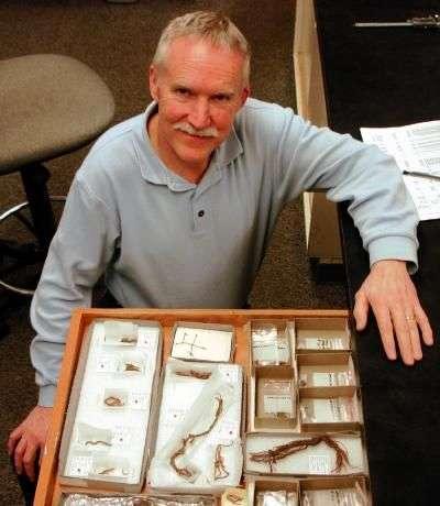Le professeur Jenkins devant les coprolithes et autres artefacts exhumés. Crédit : University Oregon Anthropology Faculty