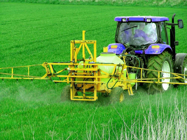Les pesticides épandus sur les cultures laissent des résidus dans la plante après sa récolte. Ces molécules sont mieux contrôlées depuis quelques années. © Peter Baxter