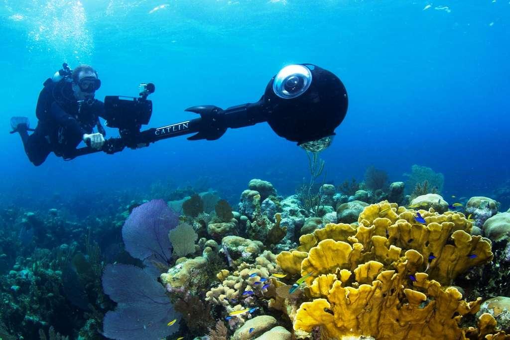 Les Cayes du Belize sont des îles coralliennes situées au large du Belize, dans la mer des Caraïbes. C'est l'un des plus grands récifs coralliens au monde après celui de la Grande Barrière de corail en Australie. Christophe Bailhache, le directeur des opérations du Catlin Seaview Survey, constitue un véritable Google Street View des récifs coralliens. Il est ici en pleine prise de vue sur le récif corallien de l'île Glover. Il utilise la toute dernière version d'un appareil photographique spécialement conçu pour cette tâche : le SVII-S. © Catlin Seaview Survey, Richard Vevers