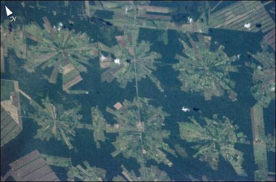 L'évolution en étoile de la déforestation, à partir des routes et des centres d'exploitation forestière. Le bois et les produits agricoles sont en majeure partie destinés aux marchés mondiaux. © Nasa / Earth observatory