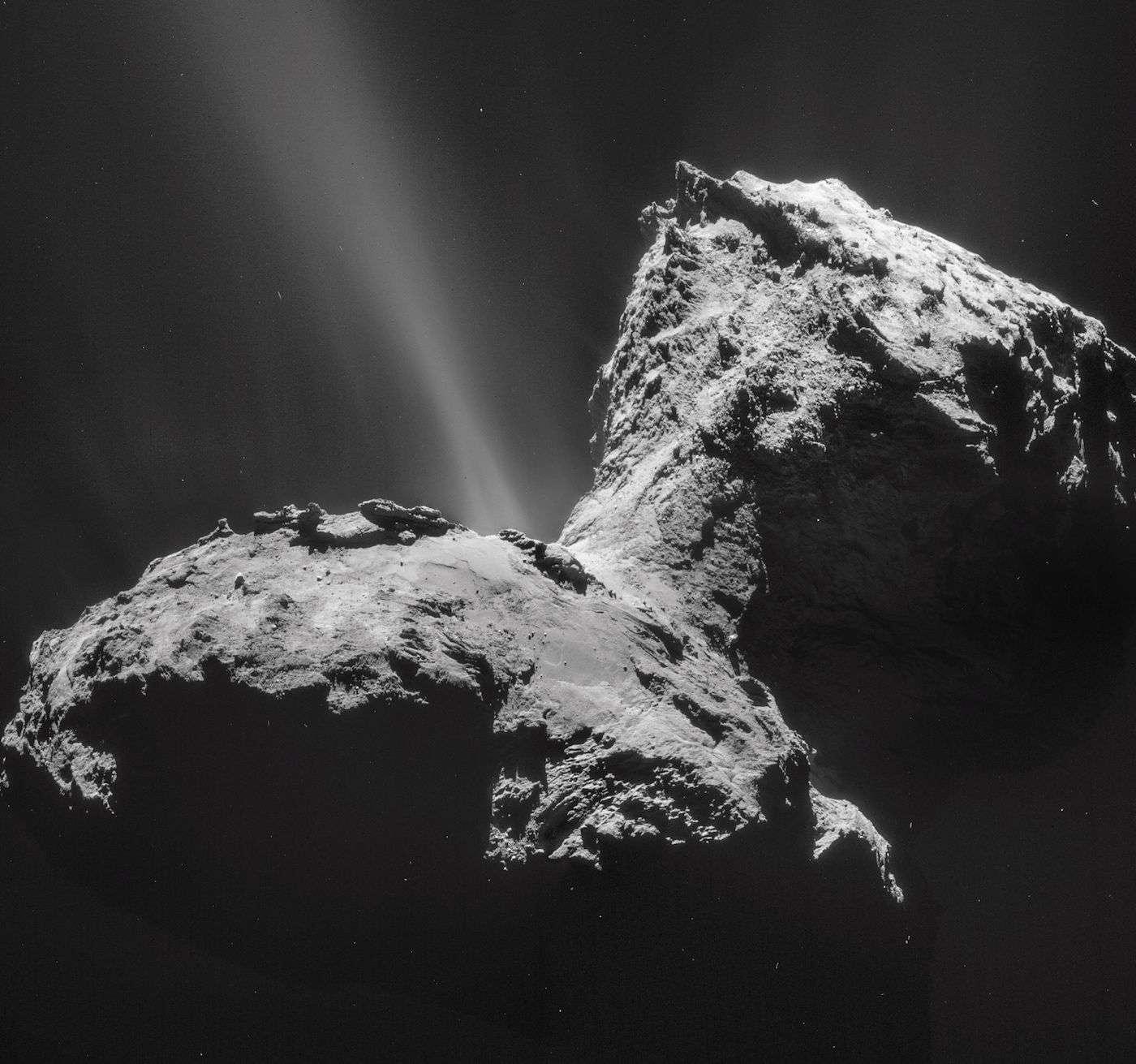 Tchouri photographiée avec la NavCam de Rosetta le 31 janvier 2015 (mosaïque de 4 images). L'activité la plus forte est observée dans la région du cou. © Esa, Rosetta, NavCam – CC BY-SA IGO 3.0