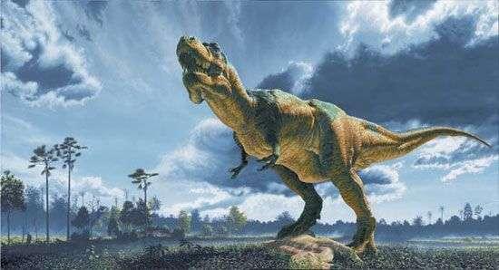 Un Tyrannosaurus rex peint par John Gurche. Du haut de cette reconstitution, des décennies de recherches paléontologiques nous contemplent... © The Field Museum