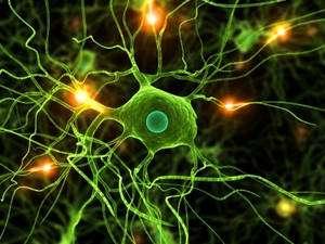 Un accident vasculaire cérébral. © DR