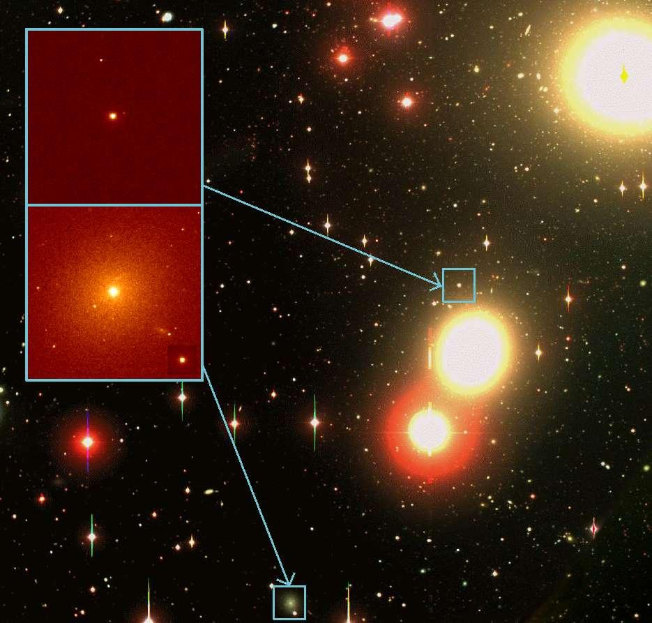 L'image à l'arrière-plan a été prise par Michael Hilker de l'université de Bonn, en utilisant un télescope de 2,5 mètres de l'Observatoire de Las Campanas au Chili. En revanche, les deux zooms sur des galaxies naines ultra-compactes ont été réalisés en utilisant le télescope spatial Hubble par une équipe dirigée par Michael Drinkwater, de l'université de Queensland. Crédit : The Royal Astronomical Society