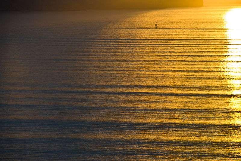 Un joli swell arrivant sur une côte de Nouvelle-Zélande. En se brisant, il formera des déferlantes idéales pour les surfeurs... © Phillip Capper, Wikipédia, CC by 2.0